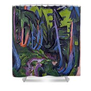 Mountain Forest Path Shower Curtain