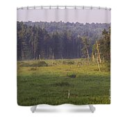 Mountain Swamp Shower Curtain
