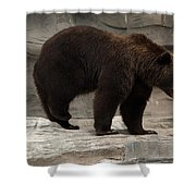 Moving Shower Curtain