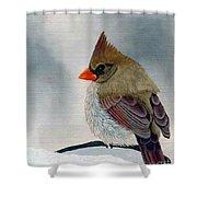Mrs. Cardinal Shower Curtain by Tracey Goodwin
