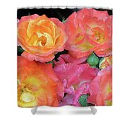 Multi-color Roses Shower Curtain