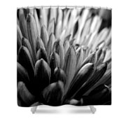 Monochrome Flower Series - Mumz The Word Shower Curtain