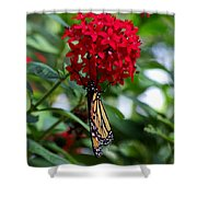 Murmur Shower Curtain