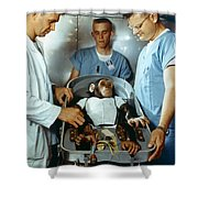 Nasa Chimpanzee, 1961 Shower Curtain