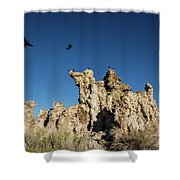 Natural Rock Formation And Wild Birds At Mono Lake, Eastern Sier Shower Curtain