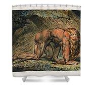 Nebuchadnezzar Shower Curtain