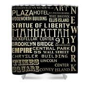 New York Famous Landmarks Silver Shower Curtain