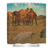 Nils Kreuger,  A Drove Of Horses Shower Curtain