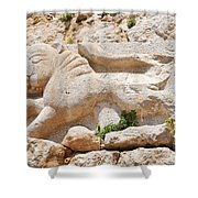 Nimrod Fortress National Park  Shower Curtain