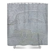 No. 436 Shower Curtain