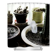 Norms Still Life Shower Curtain
