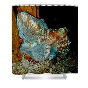 Octopus Pose Shower Curtain