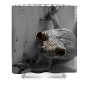 Ogling Amphibian Shower Curtain