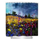 Old Chapel And Flowers Shower Curtain