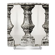 Old New Orleans - Sepia Shower Curtain