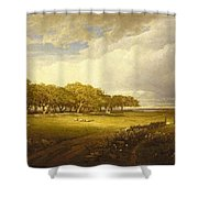 Old Orchard At Newport Shower Curtain