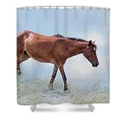 On A Mission Shower Curtain