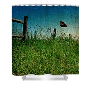 On The Breeze Shower Curtain