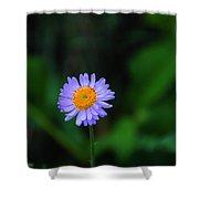 One Little Wildflower Shower Curtain