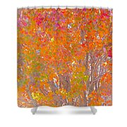 Orange And Red Autumn Shower Curtain