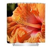 orange Hibiscus blossom Shower Curtain