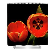 Orange Tulip Macro Shower Curtain