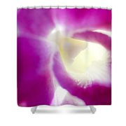 Orchid Abstract Shower Curtain