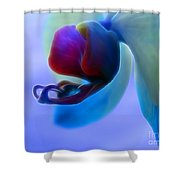 Orchid Jewel Shower Curtain