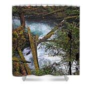 Oregon Stream Shower Curtain