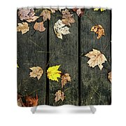 Original Autumn Foliage Shower Curtain