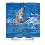 Out Of The Blue 2 Shower Curtain