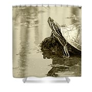 Painted Turtle On Mud In A Marsh Shower Curtain