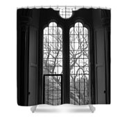Palace Window Shower Curtain