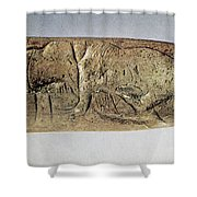 Paleolithic Tool Shower Curtain