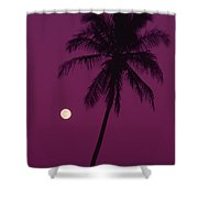 Palm Tree And Moon Shower Curtain