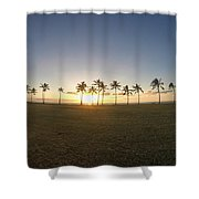 Palm Tree Paradise Shower Curtain