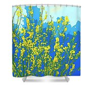 Palo Verde Spring Shower Curtain