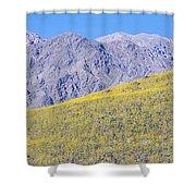 Panoramic View Of Desert Gold Yellow Shower Curtain