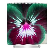 Pansy Power 71 Shower Curtain