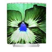 Pansy Power 75 Shower Curtain