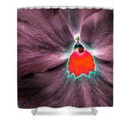 Pansy Power 80 Shower Curtain