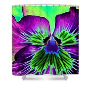 Pansy Power 84 Shower Curtain