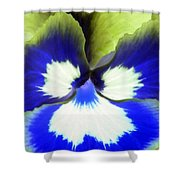 Pansy Power 85 Shower Curtain