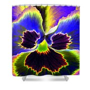 Pansy Power 87 Shower Curtain