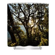 Patagonia Landscape Shower Curtain