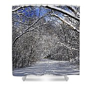 Path In Winter Forest Shower Curtain