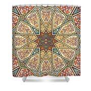 Pattern Art 007 Shower Curtain