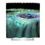 Peacock Falls Shower Curtain