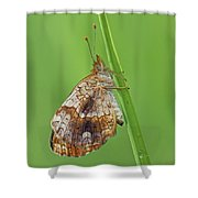 Pearl Crescent Shower Curtain
