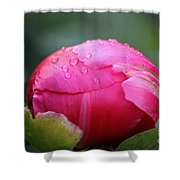 Buttoned Up Shower Curtain